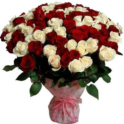 фото розы букет