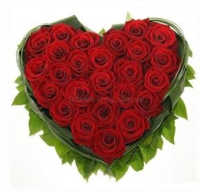 serdce-krasnye-rozy