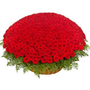 корзина из 501 розы